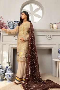 pakistani party wear dresses online free shipping